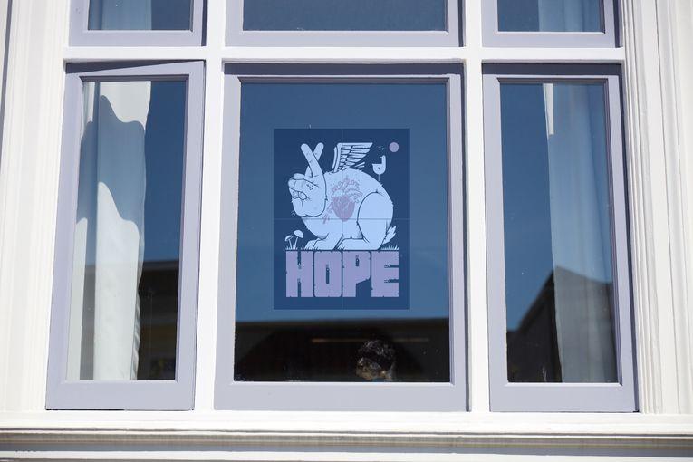HP: Windows of Hope