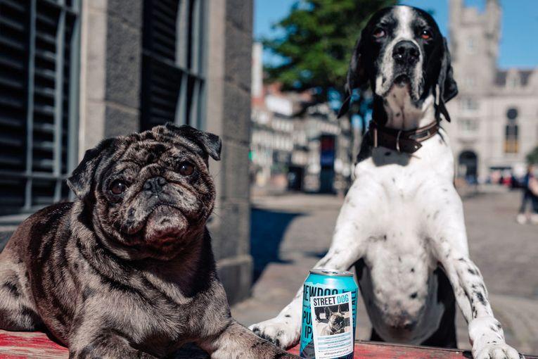 Brewdog: StreetDog