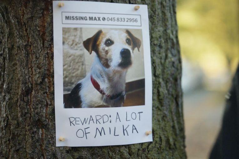 Milka: And a lot of Milka