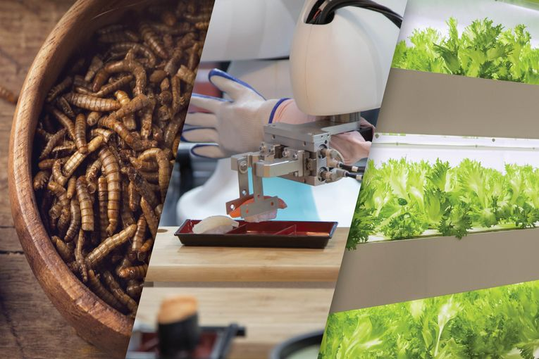 From seasoned worms to vertical farms, there are plenty of food trends to watch in 2021