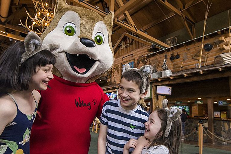 Great Wolf Resorts hires two new agencies to help make a post-pandemic splash