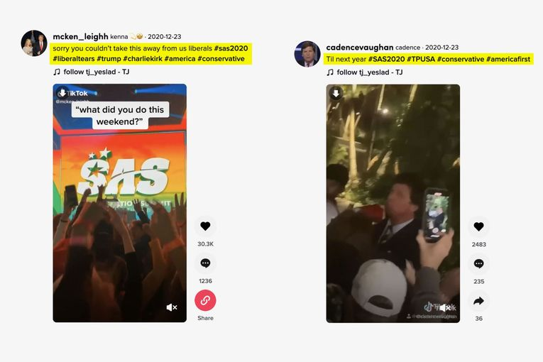 TikTok's political influencers use back door to avoid detection