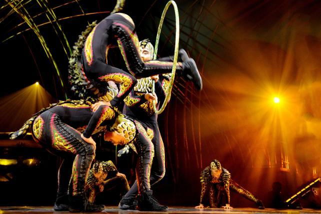 How Cirque Du Soleil Contorts to Create Change