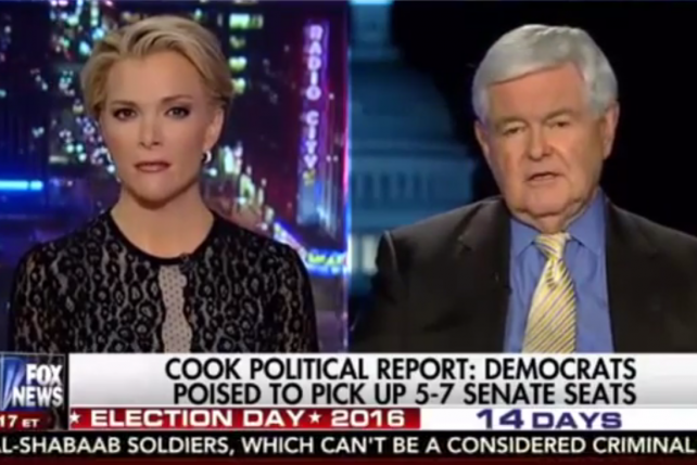Megyn Kelly to Newt Gingrich: 'Take Your Anger Issues and Spend Some Time Working on Them'