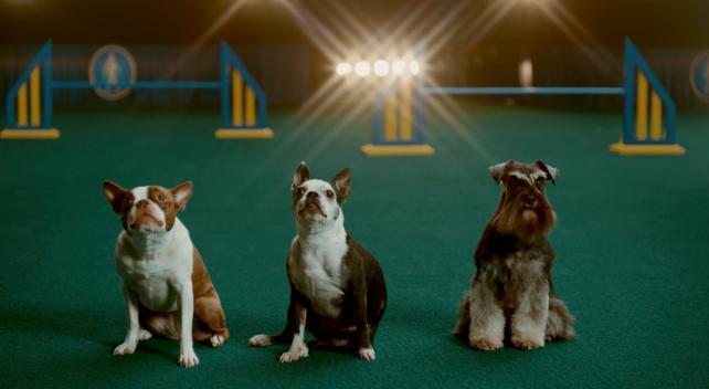 Super Bowl ad suspense, Viacom's streaming plans and 'Dry January': Wednesday Wake-Up Call