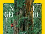 National Geographic Is No. 10 on Ad Age's Magazine A-List
